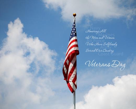 Veterans day image 2014
